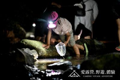 豪華露營 生態導覽 抓蝦