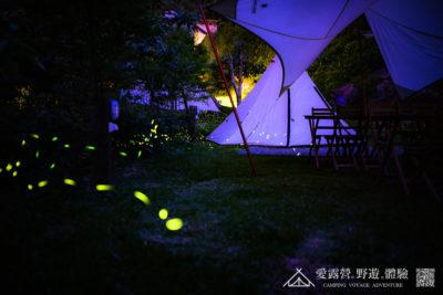 豪華露營 螢火蟲